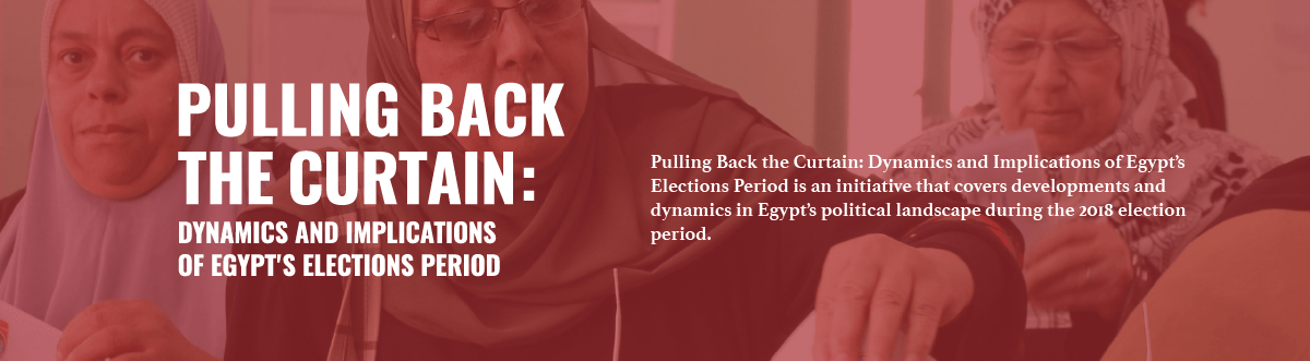 Dynamics and Implications of Egypt's Elections Period